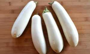 Белые баклажаны рецепты приготовления