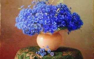 История синих васильков – Легенды о цветах, мифы и истории