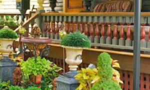 Дизайн и оформление палисадника: основы планирования, подбора цветов и растений