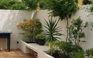 Проблемные места в саду, решение проблем, способы и методы