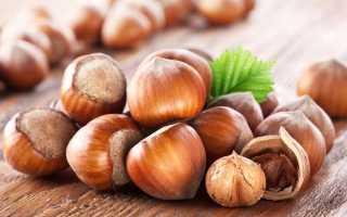 Фундук: как вырастить из ореха в домашних условиях, как посадить
