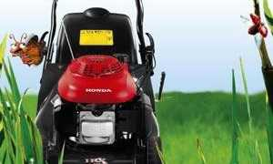 Стрижка газона: с помощью мотокосы, газонокосилки, триммера, ножниц