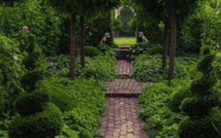 Динамика и статика в дизайне сада, приемы ландшафтного дизайна
