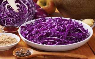 Щи из краснокочанной капусты — можно ли варить из нее, почему получаются фиолетового цвета, 7 рецептов