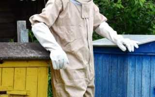 Как избавиться от пчел оводовслепней на даче навсегда: способы борьбы, чем опрыскивать