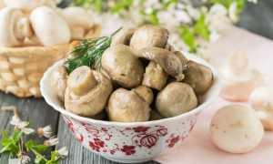 Быстрая мариновка грибов